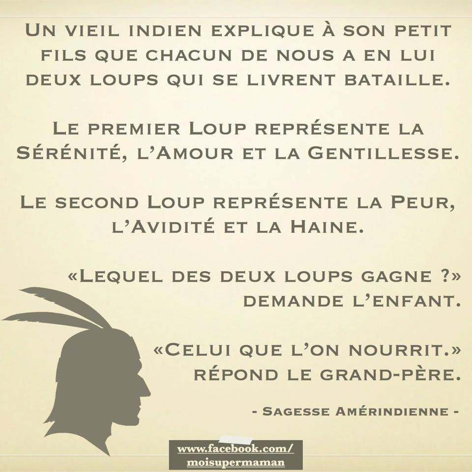 LesDeuxLoups