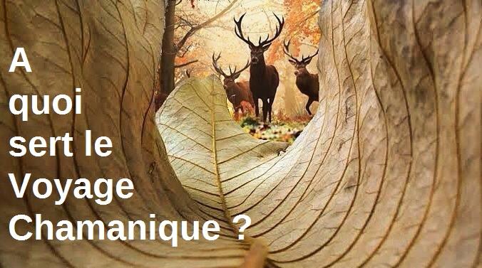 Le Voyage Chamanique #2 : à quoi ça sert aujourd'hui ?